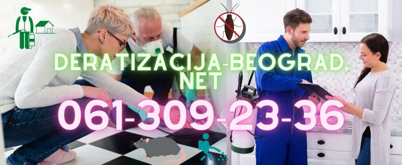 Deratizacija u Beogradu i okolini svih vrsta bubašvaba,mrava,paukova,rezistentnih stenica,buva od pasa i mačaka,glodara,miševa i pacova.Regulacija gnezda osa i osinjaka,gnezda stršljena od strane sertifikovanog radnog osoblja.Sanitarni inženjering moljaca,smrdibuba,muva,komaraca u lokalima,zgradama,institucijama.12+ godina radnog iskustva,7000+ Klijenata.Izdajemo garantni list i račun.Klijentu gratis preparati po završenom tretmanu tako da može regulisati sve što se bude pojavljivalo na licu mesta od nesavesnih komšija i kontaminirane okoline.Konsultacije su besplatne.